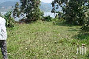 Land For Sale In Northern Uganda 1.72 Square Miles