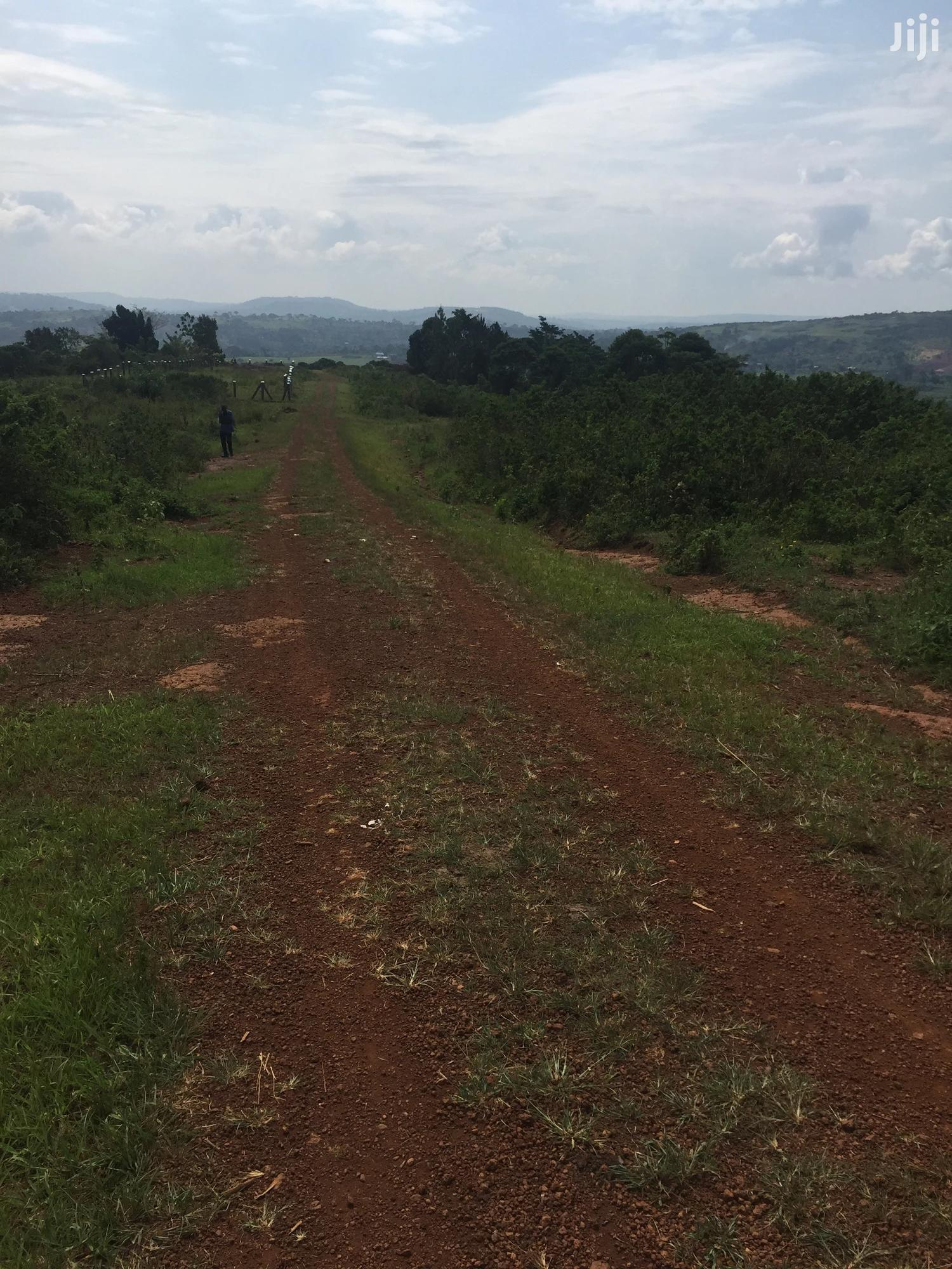 Ready Title | Land & Plots for Rent for sale in Mukono, Central Region, Uganda