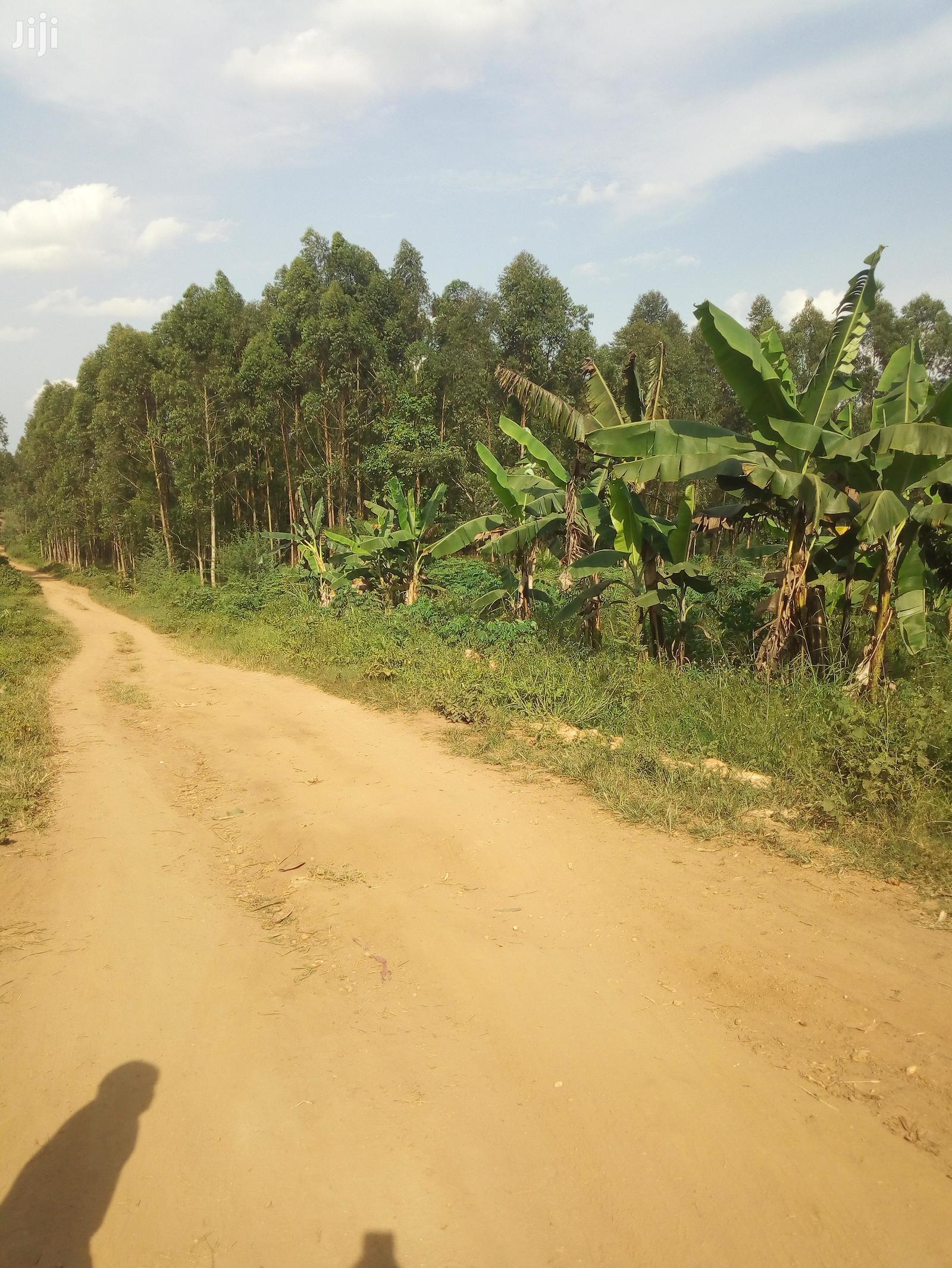 Plots and Large Land at Gobero Hoima Road for KATS DEO SURVEYS LTD