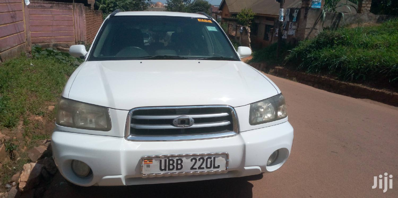 Archive: Subaru Forester 2004 White