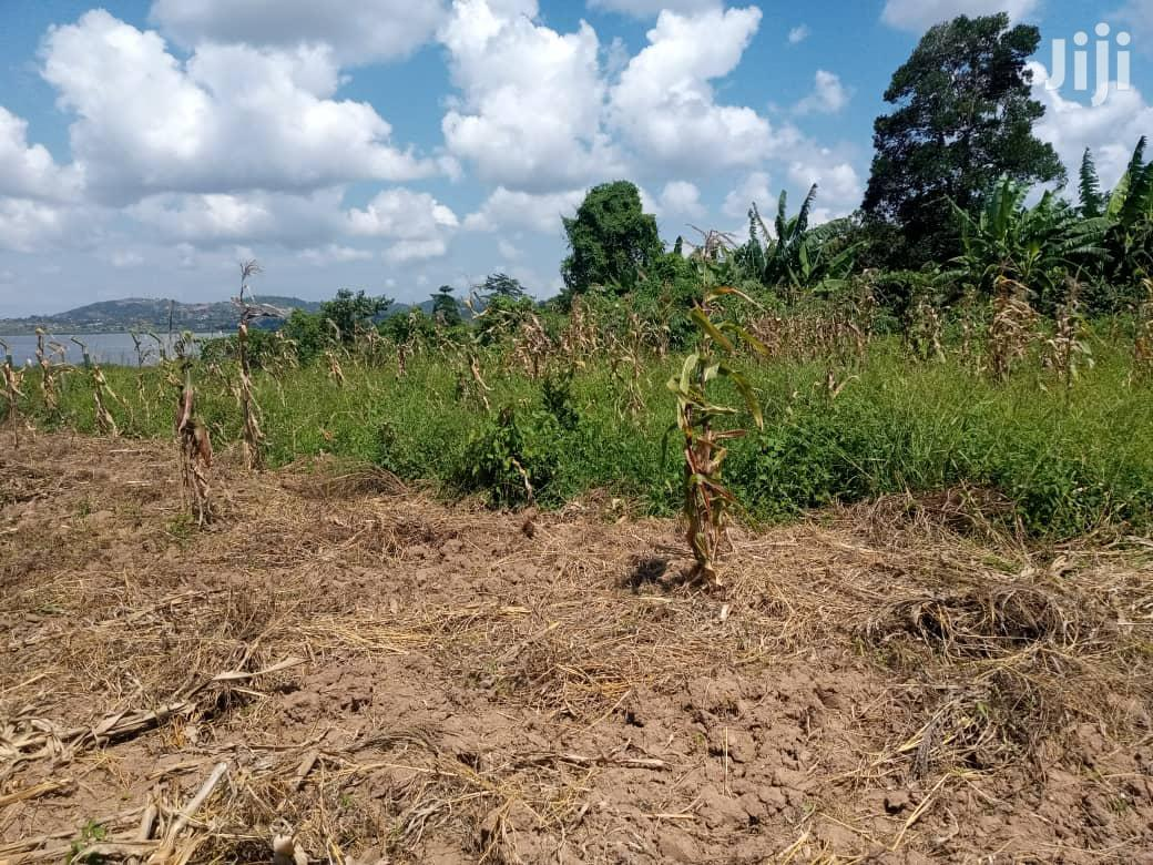 50 Decimals Land In Kigo For Sale