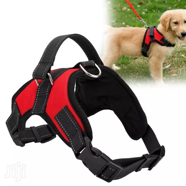 Pet Dog Soft Adjustable Harness