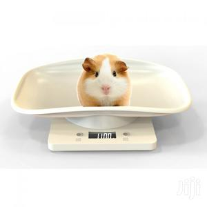 Rehab Use Animal Weighing Scales for Sale | Store Equipment for sale in Central Region, Kampala