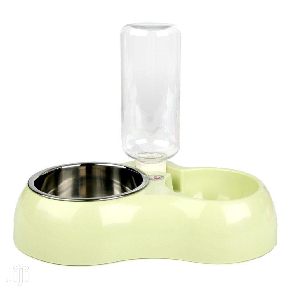 Cat Feeder Water and Food