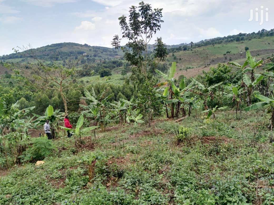 Agriculture Land for Sale Mityana Road | Land & Plots For Sale for sale in Kampala, Central Region, Uganda