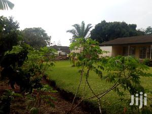 60 Decimals Land At Bugolobi   Land & Plots For Sale for sale in Central Region, Kampala