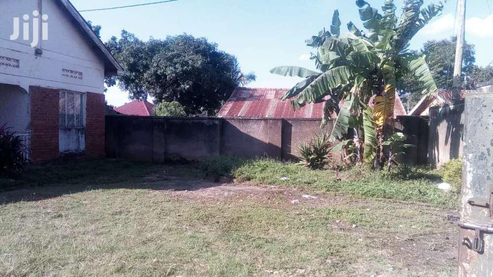 Archive: Plots In Kira Bulindo