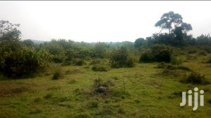 Land In Kyotera For Sale
