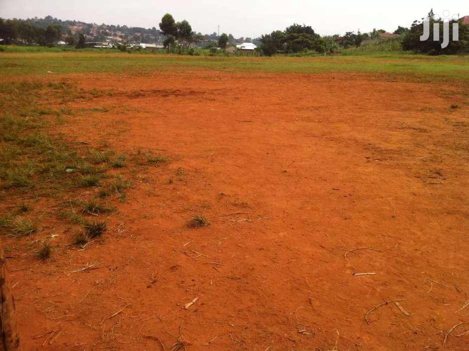 Archive: Very New Estate In Heart Of Buloba Just 500 Meters Off Tarmac Title