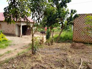 Matugga- Buwambo 50 by 100 Land for Sale | Land & Plots For Sale for sale in Central Region, Wakiso