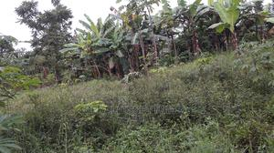 Land In Mukono For Sale | Land & Plots For Sale for sale in Central Region, Mukono