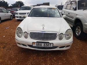 Mercedes-Benz E240 2004 White   Cars for sale in Central Region, Kampala