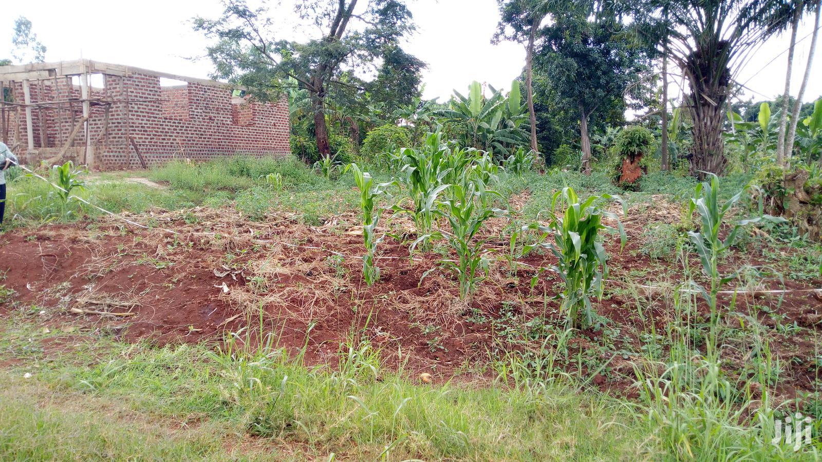 Residential Plot At Bukaya Njeru For Sale