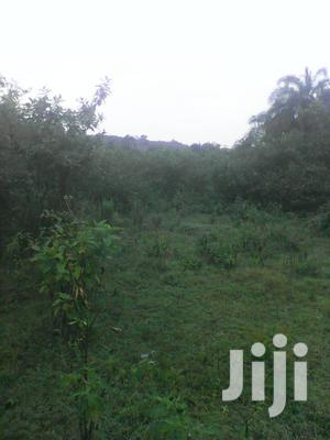 Land 250 Acres In Kiboga District Uganda