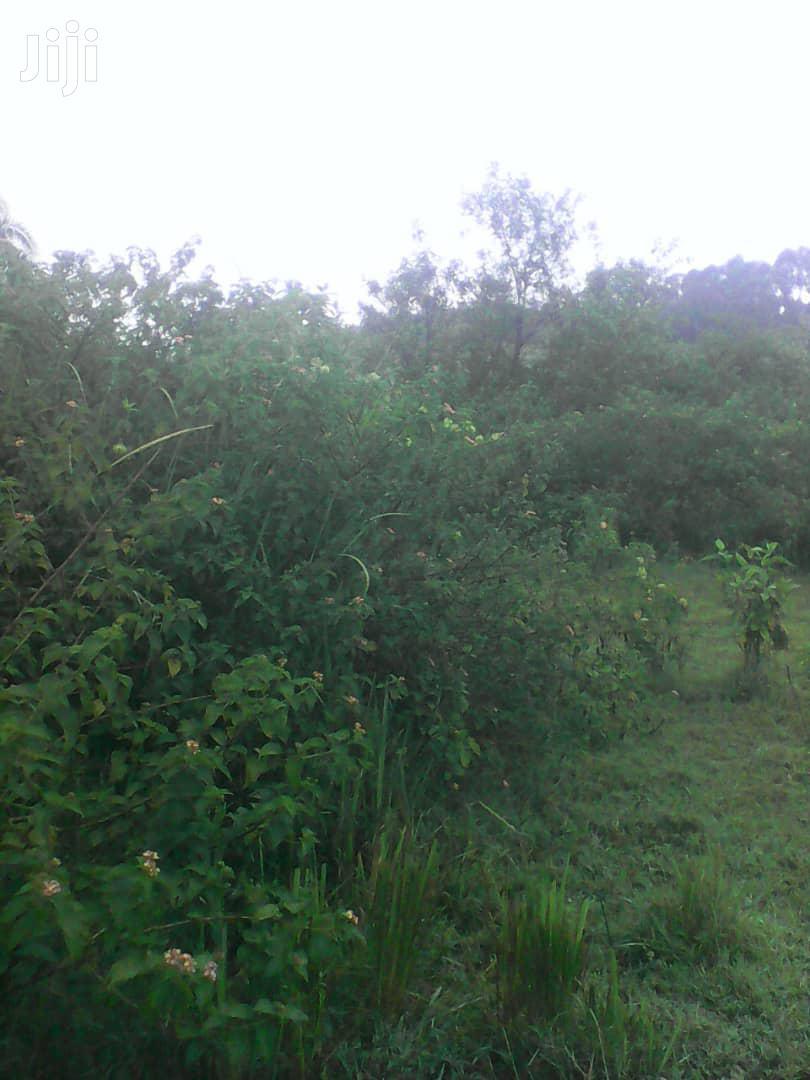 Land 250 Acres In Kiboga District Uganda | Land & Plots For Sale for sale in Kampala, Central Region, Uganda