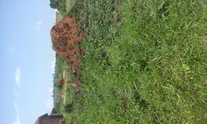 Land in Musima Village for Sale | Land & Plots For Sale for sale in Eastern Region, Jinja