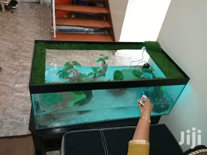 Turtle Aquarium | Fish for sale in Kampala, Central Region, Uganda