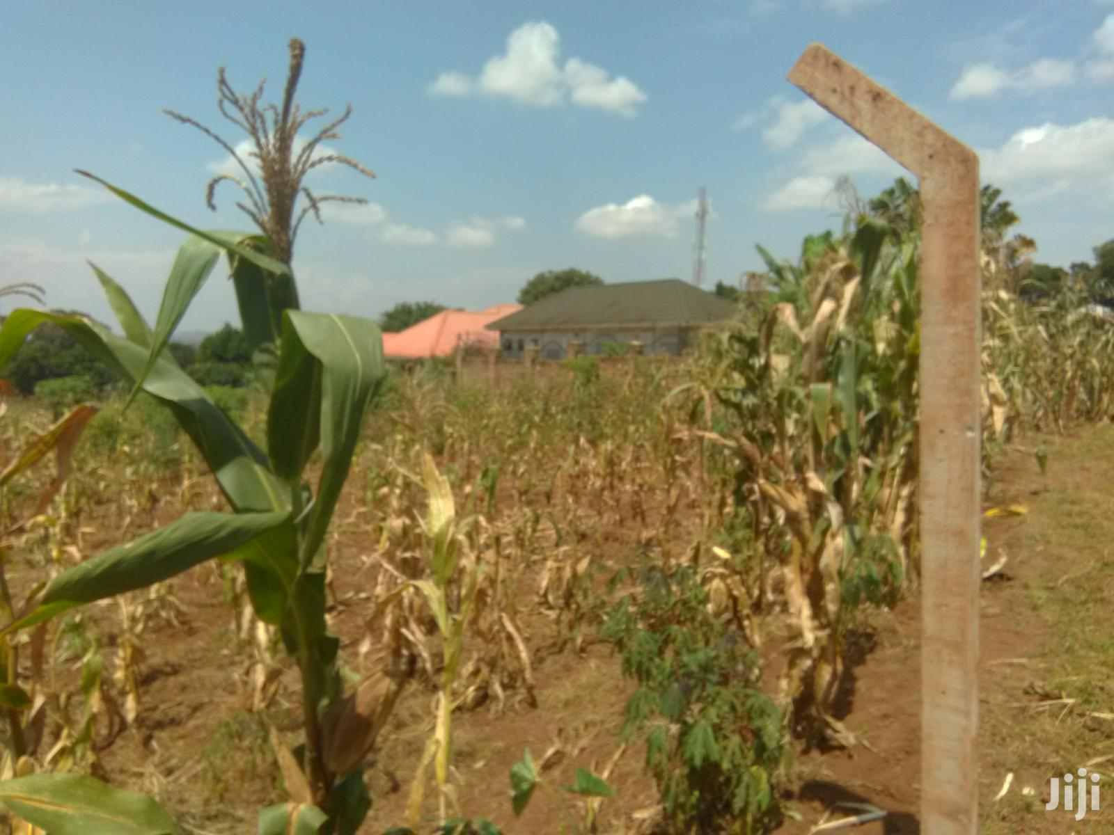 15 Decimals Land For Sale At Mutundwe