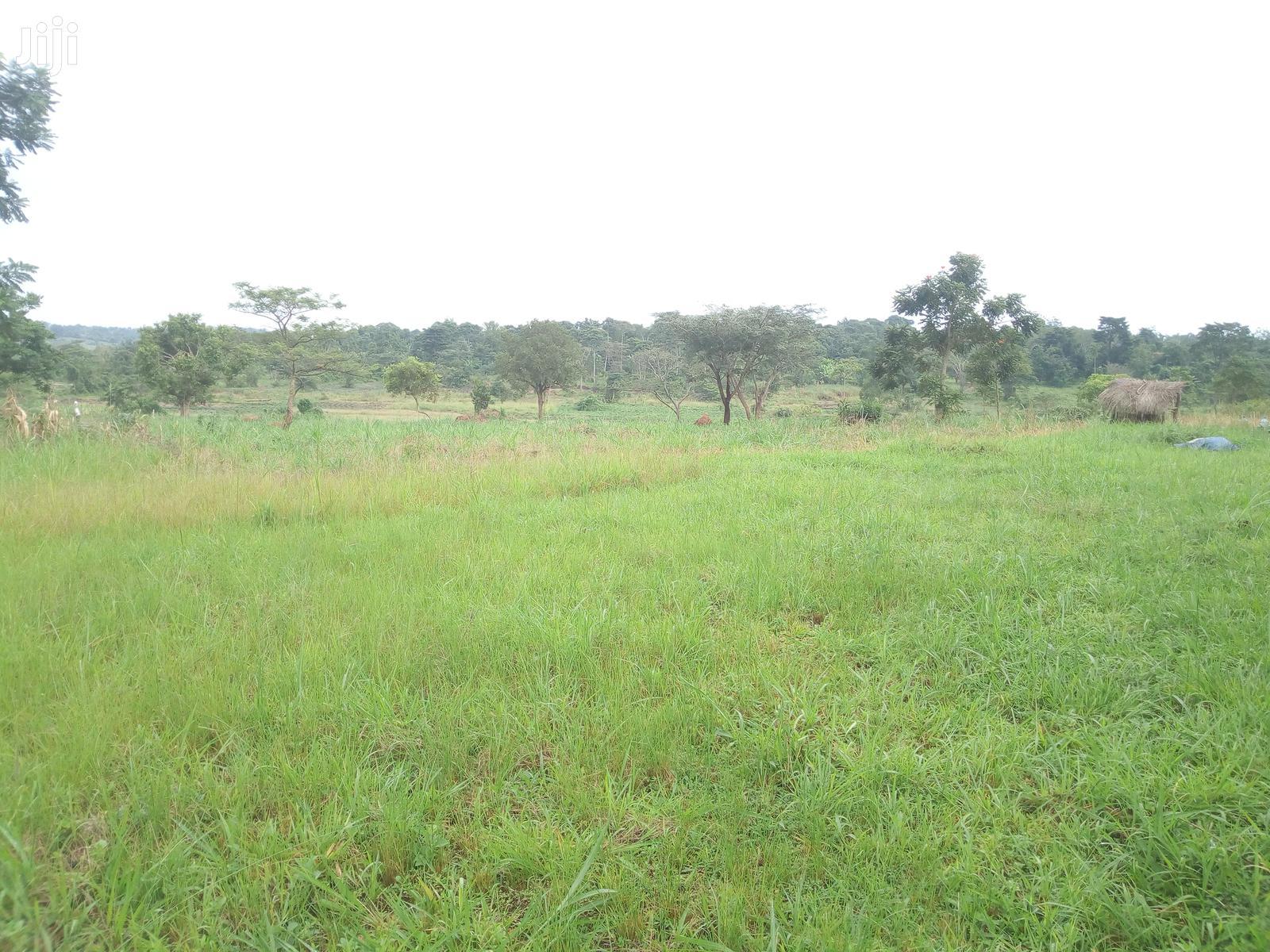 Land At Wobulenzi For Sale
