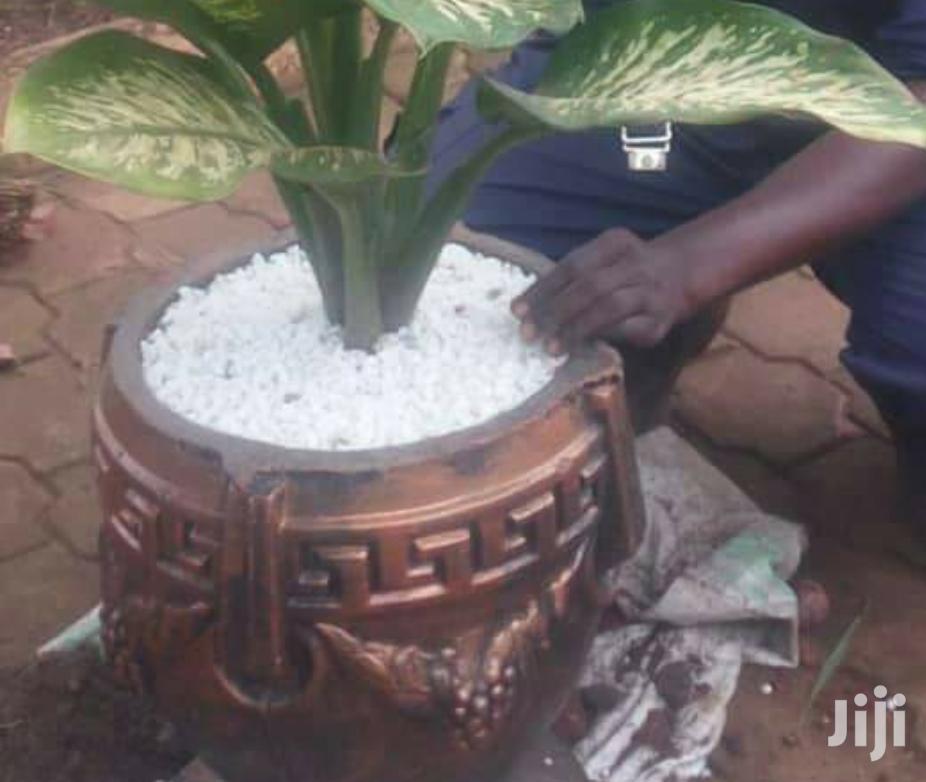 Decorative Garden Stones | Garden for sale in Kampala, Central Region, Uganda
