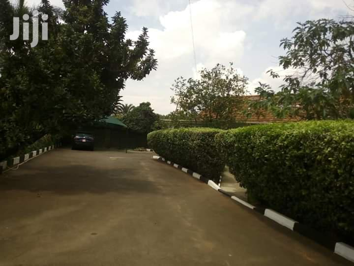 4 Bedrooms Bungalow For Rent At Kololo | Houses & Apartments For Rent for sale in Kampala, Central Region, Uganda
