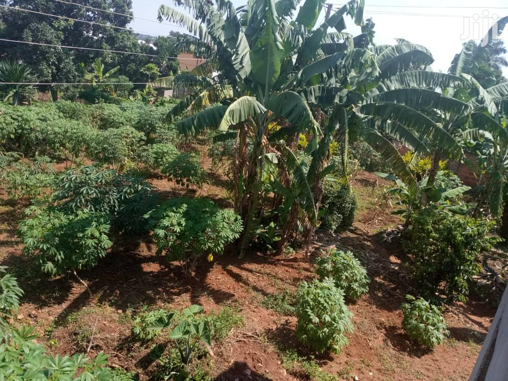 Another Hot Plot After Munyonyo On Ntebe Express | Land & Plots For Sale for sale in Kampala, Central Region, Uganda