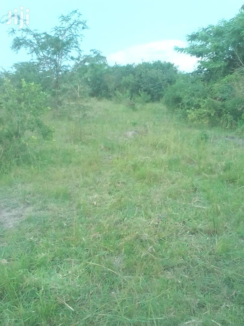 Land In Kayina Luweero District For Sale | Land & Plots For Sale for sale in Luweero, Central Region, Uganda