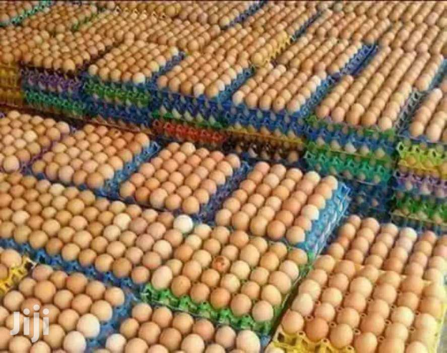 Archive: Eggs For Sell.